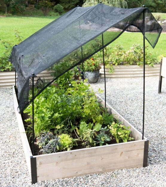 Plant beds protected by agriculture grade sun shade cloth